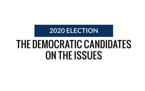 2020 Election: the Democratic candidates on the issues