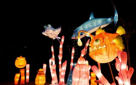 Sharing the Moonlight: The Mid-Autumn Festival