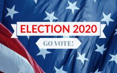 Voting Guide 2020: How to Register and Vote